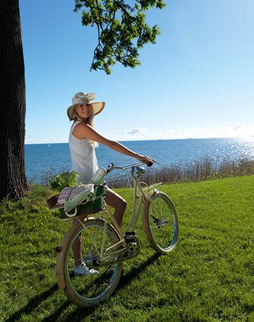 Large_Bike